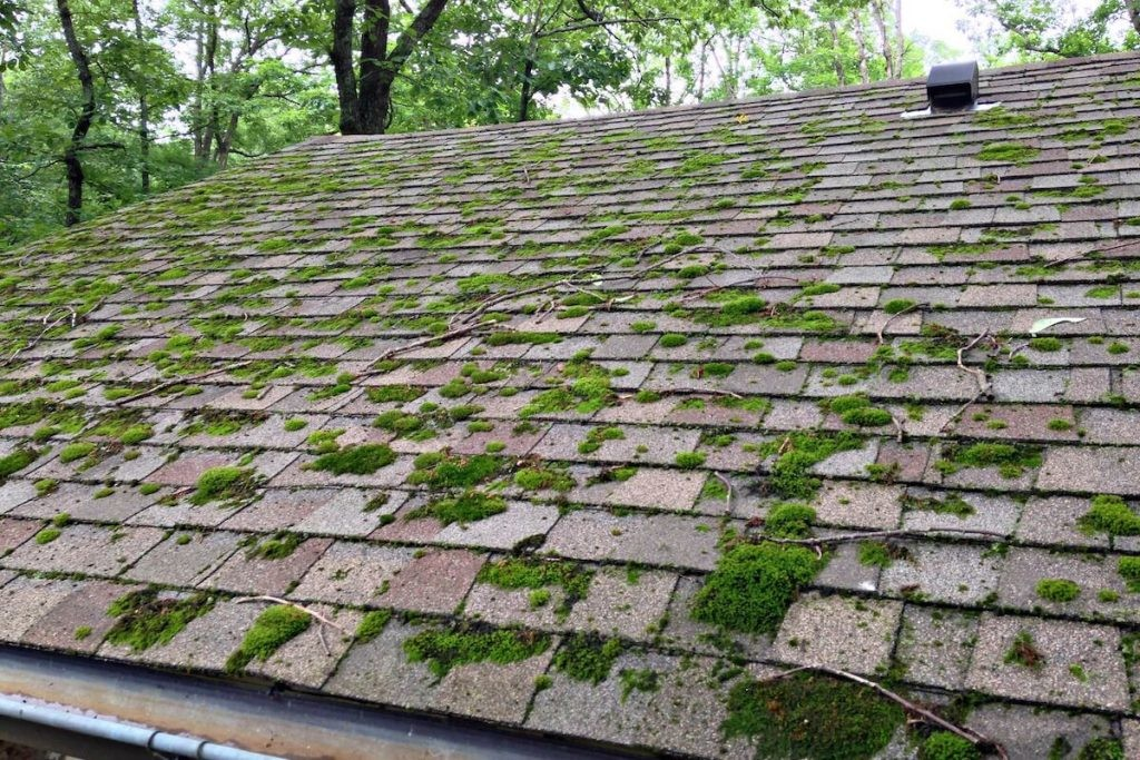 how to get a clean roof
