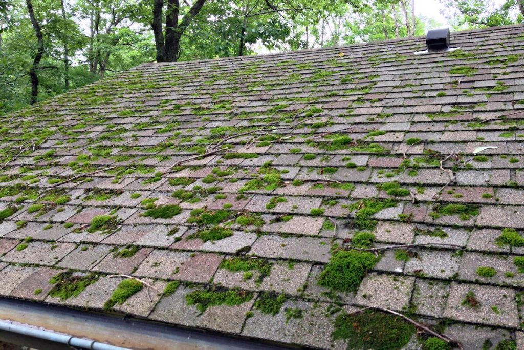 How to clean a dirty roof? A Helpful Illustrated Guide